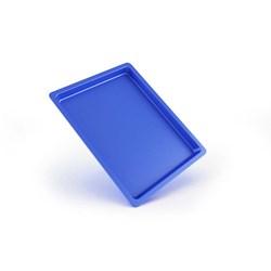 Bandeja Plastica Autoclavavel Azul 22 X 17 X 1,5 Maquira