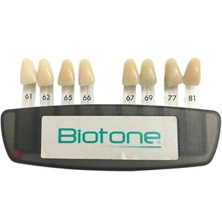 Escala de Cores Biotone 8 Cores - Dentsply