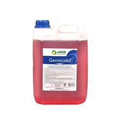 Germicidal 5l Desinfetante de Instrumentais Asfer